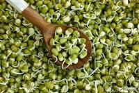 Маш (мунг) Natural Green